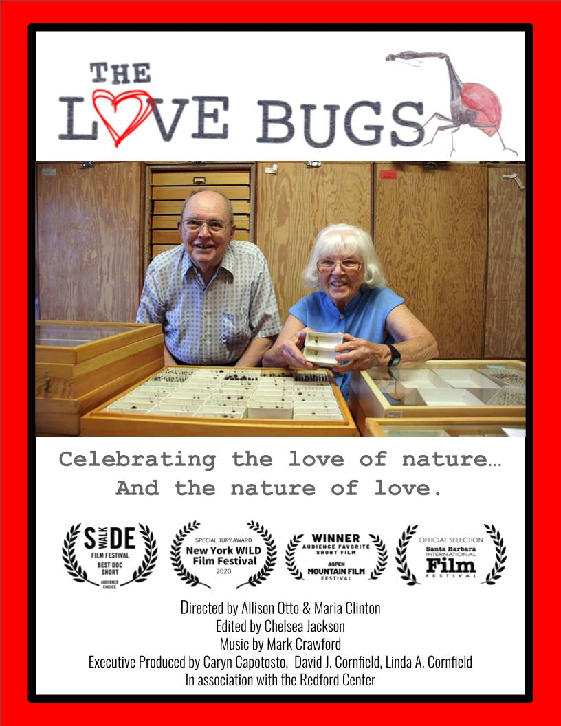 The Love Bugs (2019)
